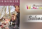 Fête des vins de Bourgueil à Tours 2019